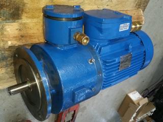Bartec Varnost ATEX brake motor